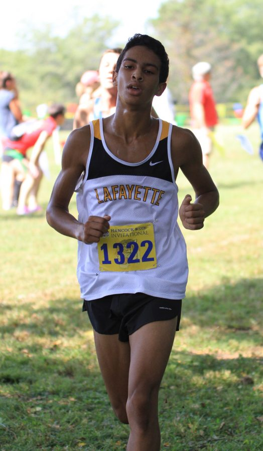 Individuals advance to Sectionals after strong showings at Class 4 District 2 Meet