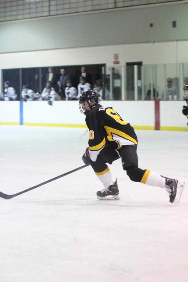 Senior+Phillip+Tannfelt+pushes+the+puck+up+the+rink+in+a+game+against+Marquette+on+Feb.+2.+