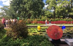 Out and About: Japanese Festival at the Missouri Botanical Gardens