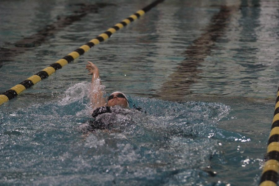 In the Lafayette quad on Jan. 9, junior Lindsey Lohr competes in the 200-yard individual medley. For her backstroke, Lohr was timed 36.16. With her butterfly at 29.85, breaststroke at 39.35 and her freestyle at 32.03, Lohr placed fifth in the race and contributed 14 points to the Lady Lancer's 535.5 victory over Nerinx Hall, Parkway South and Webster Groves.