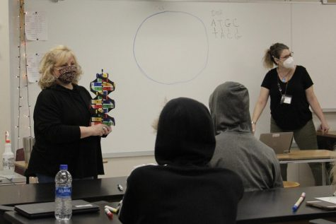 Special education teacher Kathy Clayman holds DNA model while science teacher Carrie Hall discusses the bases of DNA in a biology class. Next year, all consultant teacher services in the Rockwood School District will be replaced by Academic Support Centers.