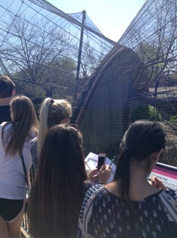 Seniors take trip to the zoo, freshmen give back to the community