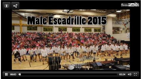 Male Escadrille 2015