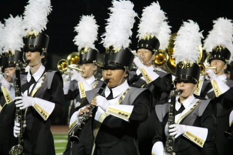As Seen In The Image: Lancer Regiment
