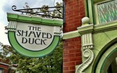 Out & About: The Shaved Duck