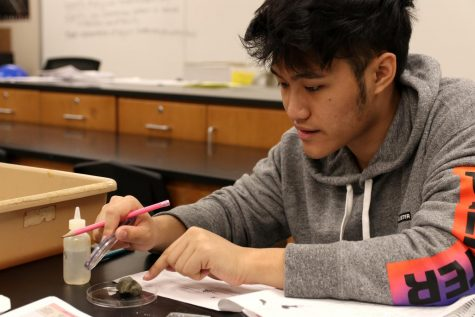 Tony Huynh, junior, works on a lab for Joseph Weir's Geoscience class.