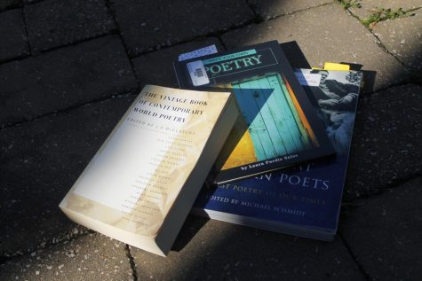 Books from the Library including: The Vintage Book of Contemporary World Poetry edited by J.D. McClatchy, Write Your Own Poetry by Laura Purdie Salas and The Great Modern Poets edited by Michael Schmidt.