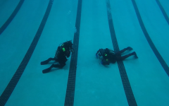 Metro West Dive Team uses LHS pool to complete annual training